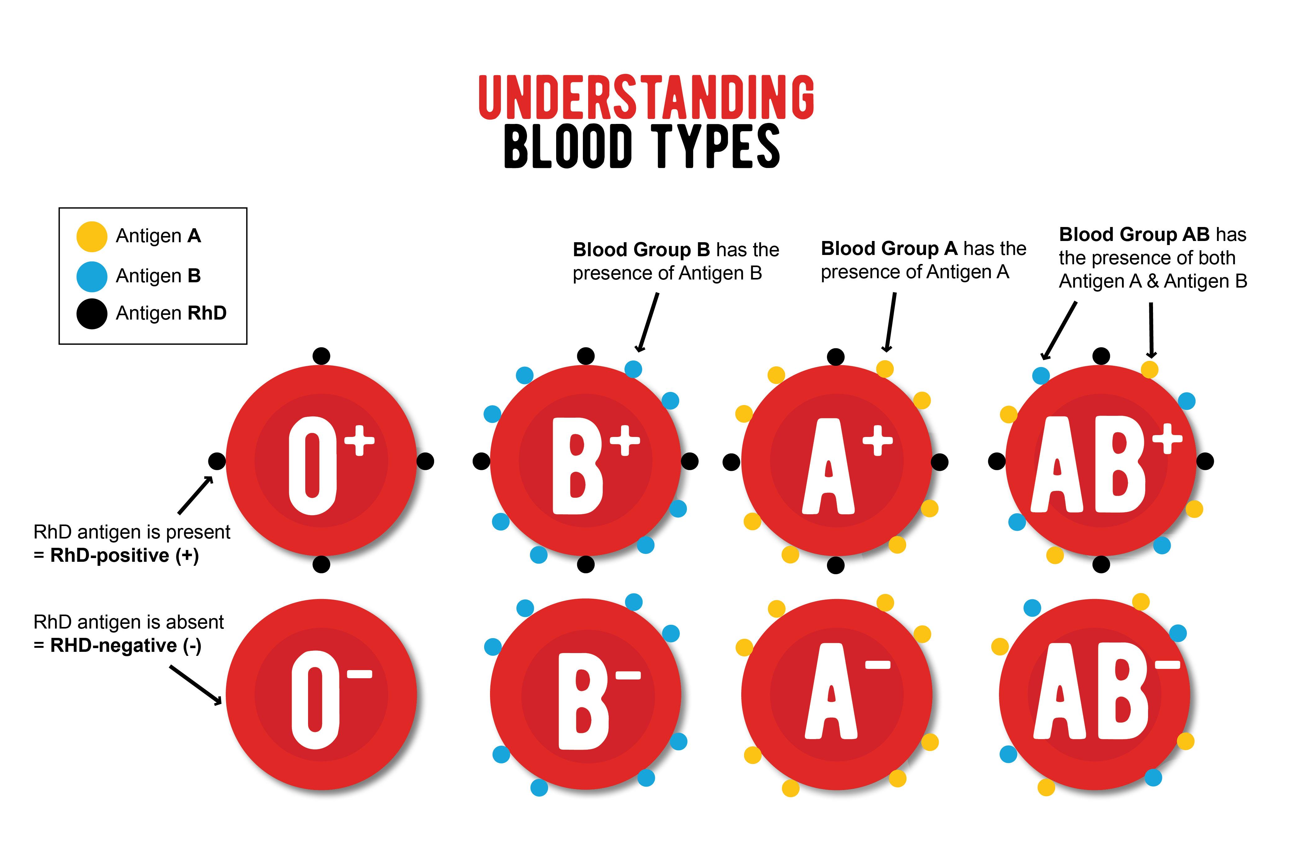 Understanding Blood Types