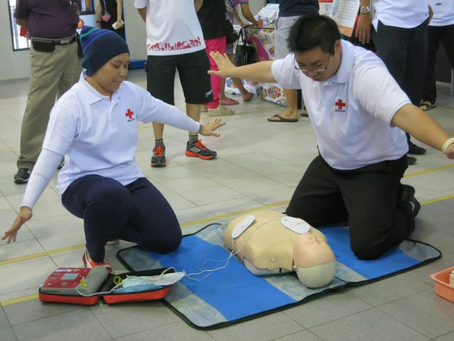 standard first aid cpr and aed pdf